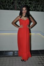 Gaelyn Mendonca at nautanki saala success bash in Andheri, Mumbai on 16th April 2013 (12).JPG