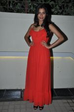 Gaelyn Mendonca at nautanki saala success bash in Andheri, Mumbai on 16th April 2013 (13).JPG