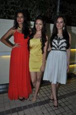 Gaelyn Mendonca, Pooja Salvi, Evelyn Sharma at nautanki saala success bash in Andheri, Mumbai on 16th April 2013 (25).JPG