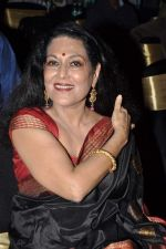 Anjana Mumtaz at  I don_t love you film music launch in Mumbai on 22nd April 2013 (47).JPG