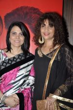 Peenaz Masani at  I don_t love you film music launch in Mumbai on 22nd April 2013 (15).JPG