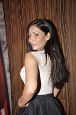 Sofia Hayat at  I don_t love you film music launch in Mumbai on 22nd April 2013 (14).JPG