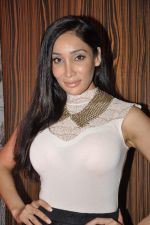 Sofia Hayat at  I don_t love you film music launch in Mumbai on 22nd April 2013 (15).JPG