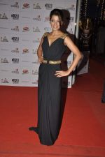 Mugdha Godse at Indian Telly Awards in Mumbai on 4th May 2013 (164).JPG