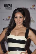Sofia Hayat at Indian Telly Awards in Mumbai on 4th May 2013 (71).JPG