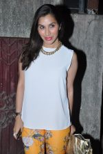Sophie Chaudhary at the Special screening of go goa gone by kunal khemu in Ketnav, Mumbai on 9th May 2013 (18).JPG