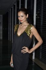 Shonal Rawat at Pria Kataria_s new collection launch in F Bar, Mumbai on 16th May 2013 (90).JPG