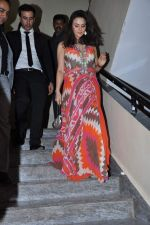 Preity Zinta, Rhehan Malliek at Ishq in Paris premiere in PVR, Mumbai on 23rd May 2013 (120).JPG