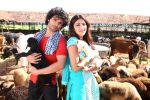 Girish Kumar, Shruti Haasan in the still from movie Ramaiya Vastavaiya (107).JPG