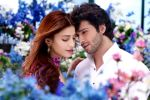 Girish Kumar, Shruti Haasan in the still from movie Ramaiya Vastavaiya (94).JPG