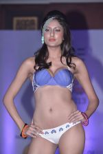 Model walks for Sports Illustrated bikini issue launch in Sea Princess, Mumbai on 14th June 2013 (156).JPG