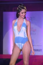 Model walks for Sports Illustrated bikini issue launch in Sea Princess, Mumbai on 14th June 2013 (177).JPG