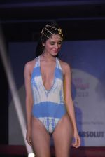 Model walks for Sports Illustrated bikini issue launch in Sea Princess, Mumbai on 14th June 2013 (178).JPG