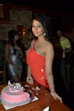 Ispita Patil at Ispita Patil birthday bash in Red Ant, Mumbai on 18th June 2013 (40).JPG