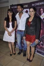 Shree Rajput, Ashutosh Kaushik, Meera at the Pre release party of the film Bhadaas in Mumbai on 24th June 2013 (31).JPG