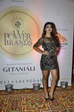 at PowerBrands Glam 2013 awards in Mumbai on 25th June 2013 (5).JPG