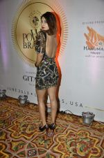 at PowerBrands Glam 2013 awards in Mumbai on 25th June 2013 (6).JPG