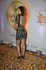 at PowerBrands Glam 2013 awards in Mumbai on 25th June 2013 (7).JPG