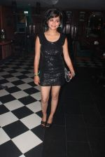 Jayshree Venkatramanan at Sudhir Sharma_s party in The Firangi Paani, Fun Rebulic, Andheri, Mumbai on 30th June 2013,1 (22).JPG
