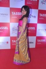 Nisha Kothari at Tassel Fashion and Lifestyle Awards 2013 in Mumbai on 8th July 2013 (133).JPG