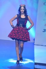 at Tassel Fashion and Lifestyle Awards 2013 in Mumbai on 8th July 2013,1 (22).JPG