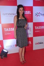 at Tassel Fashion and Lifestyle Awards 2013 in Mumbai on 8th July 2013,3 (39).JPG