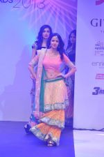 at Tassel Fashion and Lifestyle Awards 2013 in Mumbai on 8th July 2013,3 (70).JPG