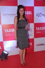 at Tassel Fashion and Lifestyle Awards 2013 in Mumbai on 8th July 2013,3 (40).JPG