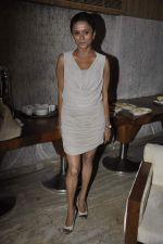 Krutika Desai Khan at the launch of TV Serial Buniyad in Bandra, Mumbai on 20th July 2013 (39).JPG