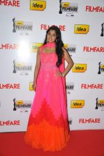 Meera on the Red Carpet of _60the Idea Filmfare Awards 2012(South).jpg