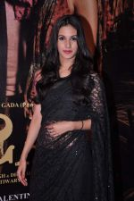 Amyra Dastur at Issaq premiere in Mumbai on 25th July 2013 (244).JPG