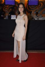 Nushrat Bharucha at Bajatey raho premiere in Mumbai on 25th July 2013 (149).JPG