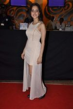 Nushrat Bharucha at Bajatey raho premiere in Mumbai on 25th July 2013 (150).JPG