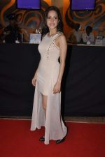 Nushrat Bharucha at Bajatey raho premiere in Mumbai on 25th July 2013 (152).JPG
