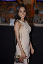 Nushrat Bharucha at Bajatey raho premiere in Mumbai on 25th July 2013 (154).JPG