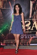 at Issaq premiere in Mumbai on 25th July 2013 (363).JPG