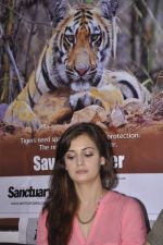 Dia Mirza at Save The Tiger campaign in Press Club, Mumbai on 26th July 2013 (20).JPG