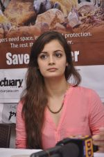 Dia Mirza at Save The Tiger campaign in Press Club, Mumbai on 26th July 2013 (22).JPG