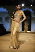 Model walks for designer Ashima Leena in Delhi on 26th July 2013 (2).jpg