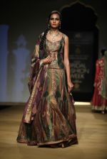 Model walks for designer Ashima Leena in Delhi on 26th July 2013 (6).jpg