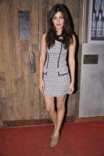 at Anusha Dandekar_s bash in Liv, Mumbai on 26th July 2013 (20).JPG