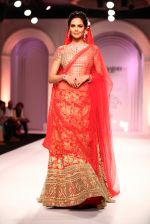 Esha Gupta walks for Designer Adarsh Gill in Delhi on 27th July 2013 (26).jpg