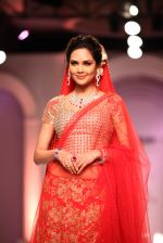 Esha Gupta walks for Designer Adarsh Gill in Delhi on 27th July 2013 (29).jpg