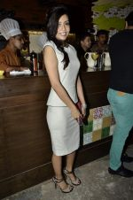 at PoCoLoCo 1st Anniversary bash in Bandra, Mumbai on 28th July 2013 (61).JPG