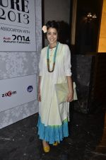 on day 1 of PCJ Delhi Couture Week on 31st July 2013 (2).JPG
