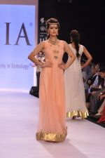 Model walk the ramp for Gia on Day 3 of IIJW 2013 on 6th Aug 2013 (58).JPG