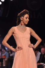 Model walk the ramp for Gia on Day 3 of IIJW 2013 on 6th Aug 2013 (65).JPG