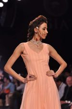 Model walk the ramp for Gia on Day 3 of IIJW 2013 on 6th Aug 2013 (66).JPG