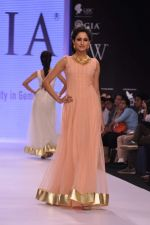 Model walk the ramp for Gia on Day 3 of IIJW 2013 on 6th Aug 2013 (72).JPG