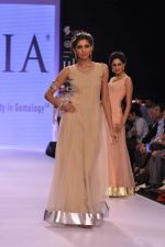 Model walk the ramp for Gia on Day 3 of IIJW 2013 on 6th Aug 2013 (77).JPG